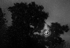 283/365 - L'uomo nero e il temporale (stefanopotesta) Tags: bw cloud rain blackwhite nuvole pioggia temporale goccia pozzanghera