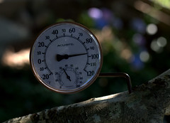 IMG_9463.CR2 (jalexartis) Tags: photography photo contest temperature challenge facebook photochallenge photoadaychallenge junechallenge jalexartis junephotochallenge temperatureprompt tthermometer