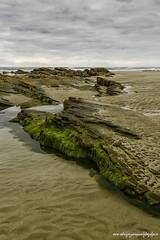 Playa de las Catedrales-3265.1 (luisrguez) Tags: espaa spain galicia es lugo ribadeo wwwrodriguezymoyanofotografoses