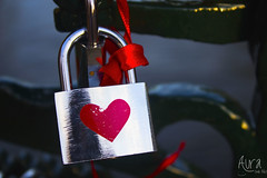 _MG_8749 (YoSoyEntropia) Tags: bridge love puente amor bridges puentes forever padlock padlocks parasiempre candados