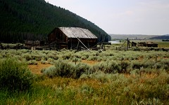 Barn Along the Beaverhead (The VIKINGS are Coming!) Tags: wood mountains fishing montana antique bare rustic scenic sage flyfishing trout float reclaimed oldbarn