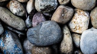 Clam Rocks