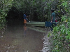 Canoeing the flooded rivers