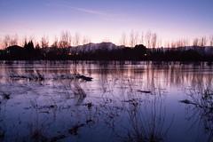 Platja de la Xiquina (Joan Josep Carot) Tags: travel sunset tourism river landscape natura catalonia catalunya ebro tortosa baixebre ebre 50d canonef1740 canon50d riuada 50dcanon