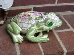 Gingie - Frogs for Yarngoddess (stitchingbushwalker) Tags: opengardens gingie yarngoddess