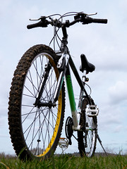 Start of Easter Holiday (2015) (Cobra Stallone De $ouza) Tags: bike bicycle architecture easter cycling canal spring wildlife mountainbike daffodil artdeco plantlife grandunioncanal perivale 2015 horsendenhill northolt