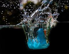 Big Splash (Tony Shertila) Tags: england water geotagged duck movement europe unitedkingdom outdoor drop bubble splash gbr bromborough geo:lat=5334111044 geo:lon=298216581 2015042608453000000000