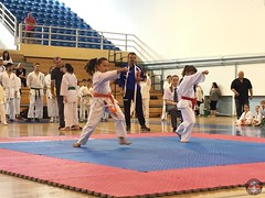 stefanou_15_5_2016_knockdown_53