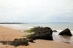 2016 - 16.5.15 Gullane Beach (17) (marie137) Tags: trees sea horses cloud sun flower castle beach dogs animals rock landscape sand berry ben bass harbour ruin gsd marie137