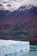 60m Thick (ckocur) Tags: patagonia ice southamerica argentina nationalpark glacier peritomoreno elcalafate icefield southernpatagonia
