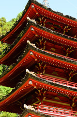 Japanese Tea Garden (dalecruse) Tags: sanfrancisco california japan garden outdoors japanese japanesegarden tea outdoor japaneseteagarden teagarden lightroom