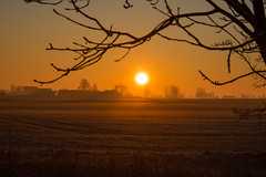 Morning on the Countryside (Infomastern) Tags: morning sky sun sol sunrise landscape countryside himmel soluppgng morgon landskap landsbygd