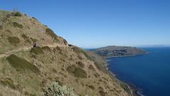 Paekakariki to Pukerua Bay New Zealand Escarpment walk (spiceontour) Tags: track tasmansea escarpment porirua paekakariki 2016 pukeruabay