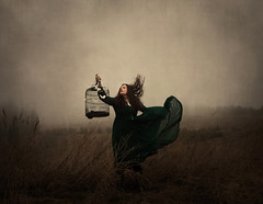 The Liberator (Maren Klemp) Tags: sky woman mist painterly texture birdcage nature field fog clouds vintage hair outdoors movement dress wind fineart dream butterflies windy running nostalgic dreamy melancholy straws symbolic fineartphotography darkart evocative fineartphotographer darkartphotography
