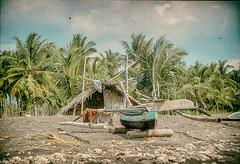 Boat and Hut - somewhere in Indonesia - Analog Series (rakelgoiri) Tags: old sky beach nature indonesia landscape boat sand scratches palmtrees hut fishingboat scannedslide minolta7000maxxum rakelgoiri
