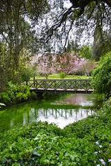 ponte (sz1507) Tags: verde primavera nature alberi garden spring natura ponte acqua ruscello piante calma giardino legno riflesso ninfa d60 torrente vegetazione giardinidininfa