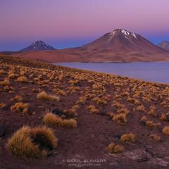 OA_CL_01169 (Oriol Alamany) Tags: chile sunset mountains southamerica canon twilight desert lagoon atacama andes desierto laguna altiplano miscanti