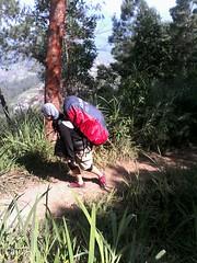"Pengembaraan Sakuntala ank 26 Merbabu & Merapi 2014 • <a style=""font-size:0.8em;"" href=""http://www.flickr.com/photos/24767572@N00/27163207015/"" target=""_blank"">View on Flickr</a>"