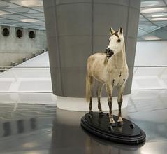 I believe in the Horse (OculusFilm) Tags: architecture germany deutschland stuttgart unstudio mercedesbenzmuseum hansdejonge oculusfilm