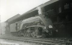 img622 (OldRailPics) Tags: st edinburgh steam kingfisher british locomotive railways margarets 64a 60024