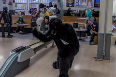 FurBowl2016_37 (Hobo Takoda) Tags: bowling bonnie furries doon fursuit furbowl hobotakoda