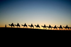 Camel Caravan (Ch@rlie_Brownie) Tags: africa naturaleza sahara sunrise dawn sand desert silhouettes paisaje amanecer morocco desierto animales marruecos camels caravana merzouga ergchebbi camellos