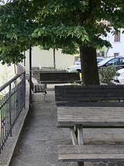 Acone_e-m10_1005065241 (Torben*) Tags: italien italy tree tuscany benches baum toskana baenke acone rawtherapee olympusm1442mmf3556iir olympusomdem10
