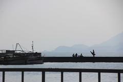 4 (  / Yorozuna) Tags: sea silhouette japan boat seaside fishing fisherman ship seawall hiroshima   breakwater takehara  angler  angling            tadanoumi       seaembankment  tideembankment tadanoumiport coastlevee