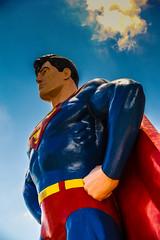 2016 Superman Celebration (mikes-photomemories) Tags: green crimson robin june statue scarlet dc starwars illinois zoom cosplay flash patrick ivy super mario superman wonderwoman batman joker metropolis supergirl arrow lantern superheroes comet catwoman butch hawkgirl shazam justiceleague speedster dragster cosplayers munsters stargirl hawkman antman reverseflash ccjitters 2016supermancelebration