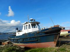 Old Boat, Balblair, Black Isle, April 2016 (allanmaciver) Tags: old boat balblair blue shades close up clouds weather april sunny warm balck isle easter ross allanmaciver