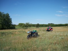 Goin' Berry Pickin'. (geevee41) Tags: summer grass bush pasture prairies shrubbery pickingberries