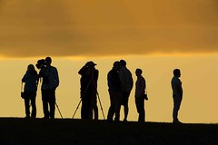 Hill of Observation (MrDennisO) Tags: sunset tetons yellowstone hill silhouette photographers