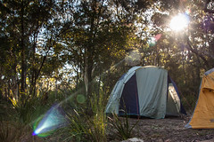 Week 14 Sunflare (karenlmoloney) Tags: morning camping sun project bush tent week 52 sunflare