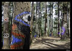 Bosque de Oma \ Oma forest (Kortezubi, Bizkaia) (isiltasuna) Tags: españa forest spain eyes europa europe paint painted country ojos bosque oma bizkaia basque vasco euskadi agustin vizcaya ibarrola pais basoa pintado begiak margotua