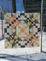 Star Jump Quilt by Jess of Elven Garden Quilts (LizCheese) Tags: quilting finish quilts flimsy starjumpquilt