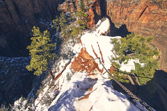 Angel's Landing (West Leigh) Tags: travel southwest nature climb utah desert hike wanderlust adventure explore journey experience zion angelslanding nationalparks wander courage discover adventerous canoneos7d
