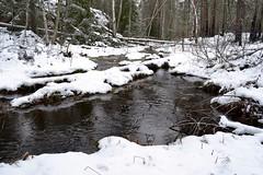 A brook in snowy forest SE of Pond Vakkalampi from the south (Nuuksio national park, Vihti, 20120106) (RainoL) Tags: winter snow forest finland geotagged january v brook fin nuuksio 2012 uusimaa vihti vichtis nuuksionationalpark 201201 20120106 geo:lat=6031405100 geo:lon=2447470200 brooksofnuuksio vakkalampi