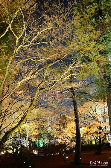 嵐山寶嚴07.jpg