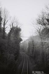 Bristol train tracks (demps_sean) Tags: train tracks lines monochrome film 35mm canonet ql17 black white blackandwhite delete delete2 delete3 delete4 delete5 delete6 delete7 delete8 save delete9 delete10
