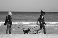 Walking on the beach (salvatore zizi) Tags: sardegna sea people woman dog pet mer beach dogs cheese women san mare sardinia looking playa cutie hi say plage salvatore zizi teodoro