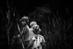 Past and future (Ans van de Sluis) Tags: portrait bw blur monochrome birds children blackwhite child secret blurred future mysterious cinematic past secretive ansvandesluis