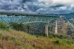 RHM_1627-1382.jpg (RHMImages) Tags: california bridge trees landscape us nikon unitedstates under auburn historic foresthill d810