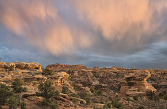 Needles Sunset (snowpeak) Tags: sunset canyonlandsnationalpark pinkclouds needlesdistrict glowingrocks nikond800e