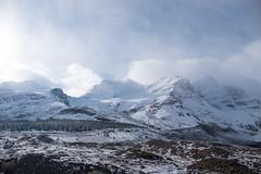Columbia Ice Field Glacier (flippers) Tags: mountain snow canada cold glacier snowcapped alberta icefields columbiaicefields snowcap