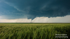 Rhythm of a Wild Heart (keltonhalbert) Tags: city sky storm nature field weather wheat great kansas dodge thunderstorm plains storms tornado severe violent thunderstorms stormchasing minneola tornadoes