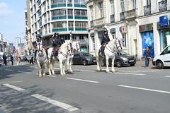 manif_26_05_lille_109 (Rémi-Ange) Tags: fsu social lille fo unef retrait cnt manifestation grève cgt solidaires syndicats lutteouvrière 26mai syndicatétudiant loitravail