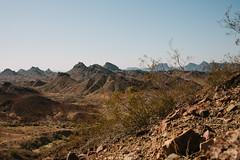 5R6K2804 (ATeshima) Tags: arizona nature havasu