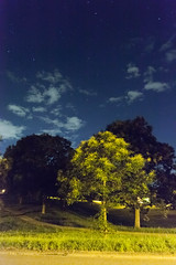 Park at Midnight (tecgen) Tags: park tree clouds handheld karlsruhe vc lustgarten hohenwettersbach
