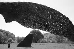 MRP_4324 (preedyphotos) Tags: flowers sculpture motion bristol harbour whales fireengine fountains blurr rockclimbing harbourside seagul collegegreen parkstreet portway bristolharbourside twinhorns