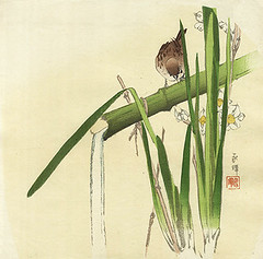 Bunchflower daffodil and Eurasian tree sparrow (Japanese Flower and Bird Art) Tags: flower bunchflower daffodil narcissus tazetta amaryllidaceae bird eurasian tree sparrow passer montanus passeridae nihonga woodblock print japan japanese art readercollection